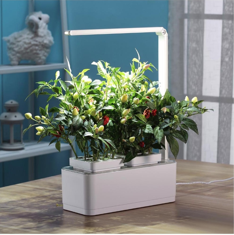 Умный сад iGreen с подсветкой